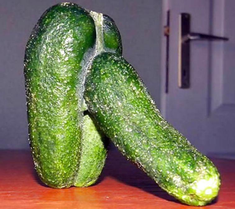 Zielony ogórek bardziej przypomina penisa niż pospolite warzywo